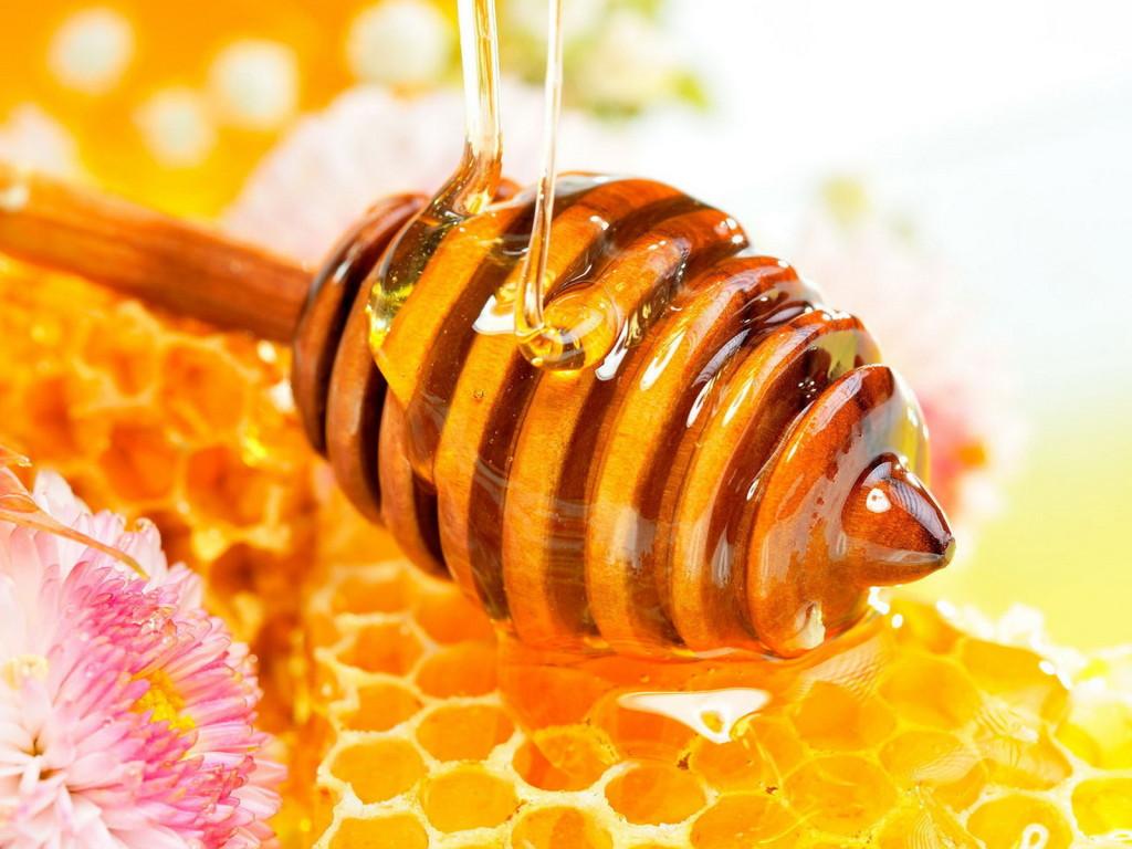 полезен ли мед
