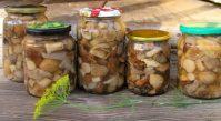 Заготовка грибов на зиму: подборка лучших рецептов