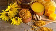 Целебные продукты пчеловодства и пчелы в апитерапии