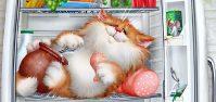 История про кота: Как кот отправился в полет