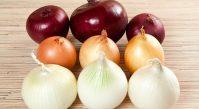 Польза разных видов лука для здоровья