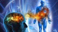 Причины и семь степеней зашлакованности организма