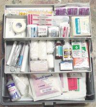 Домашняя аптечка, что она должна содержать?