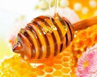 Наш любимый мёд и его полезные свойства